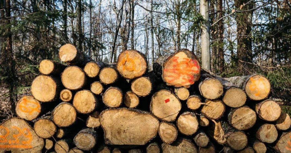 ilmastonmuutos, katowice